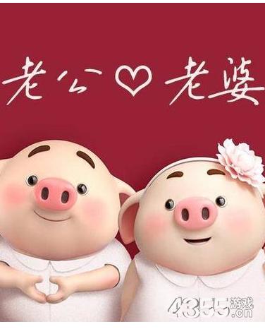 猪年头像制作app