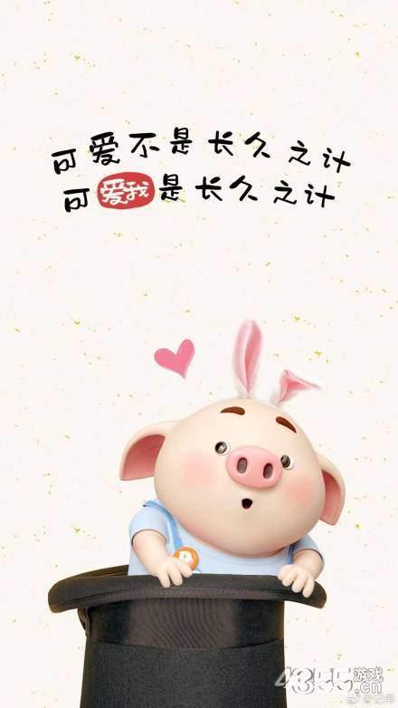 猪年限定壁纸