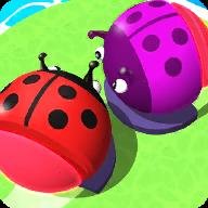愤怒的甲虫