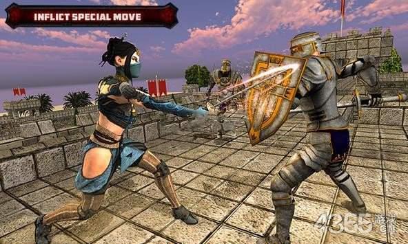 美国忍者剑与刺客战士战斗