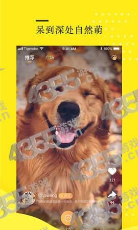 蛋挞短视频app