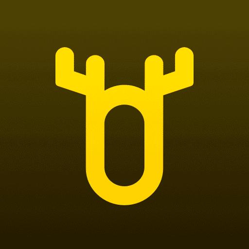 顽鹿教练app