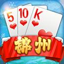 锦州合声视频游戏510k