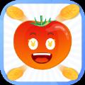 西红柿分期