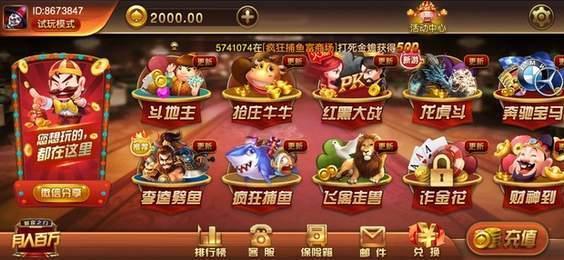 大资本国际棋牌娱乐官网版