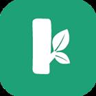 树桩网分享赚钱app